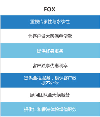 FOX FINANCIAL GROUP LIMITED香港保险服务内容